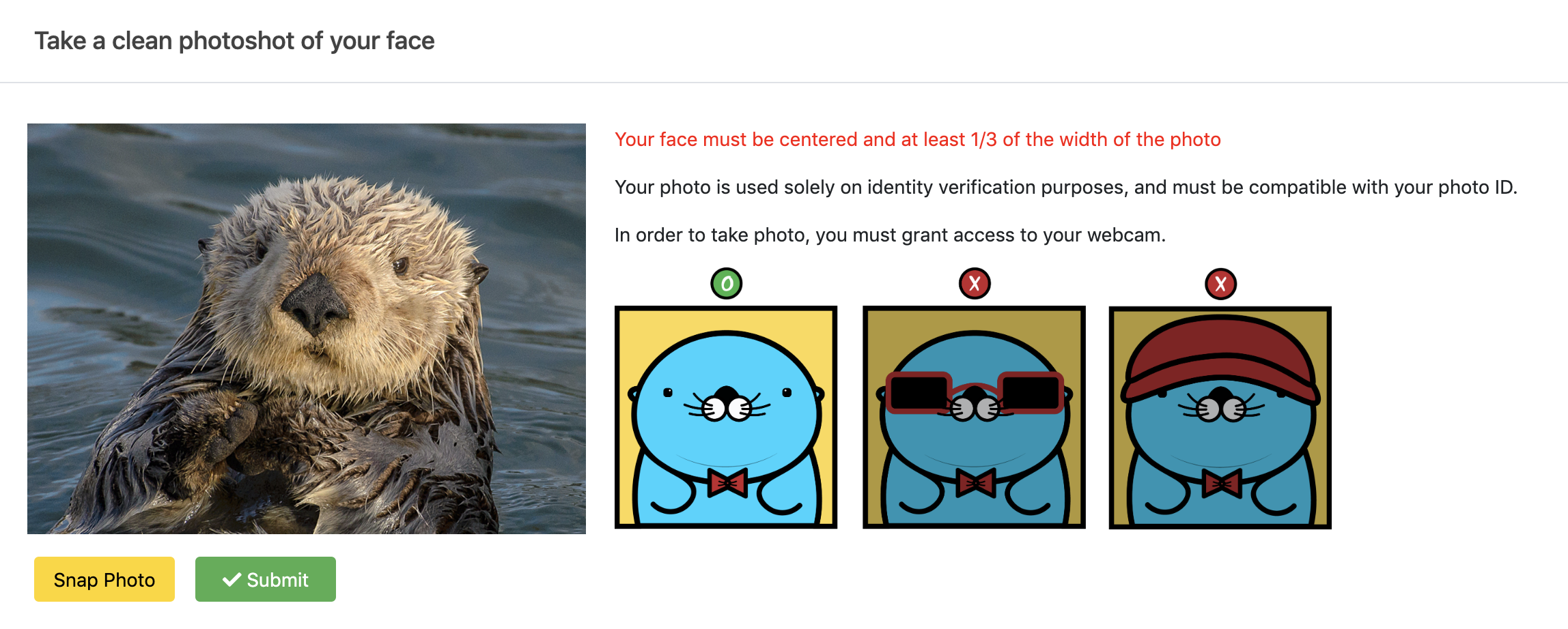 desktop version of photos of Richie that instructs how to take a photo for a facial verification at Option Pool